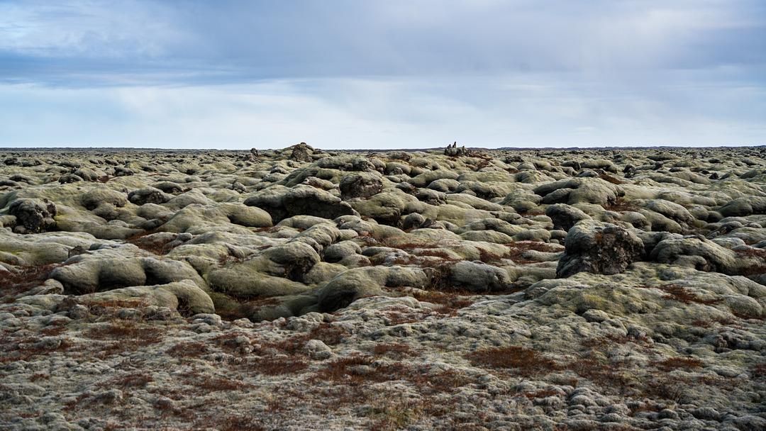 Pola lawy w drodze do Fjaðrárgljúfur